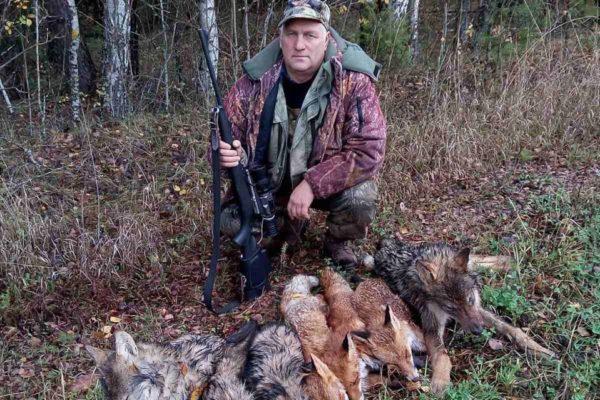 Охота на волка, лисицу, енота.